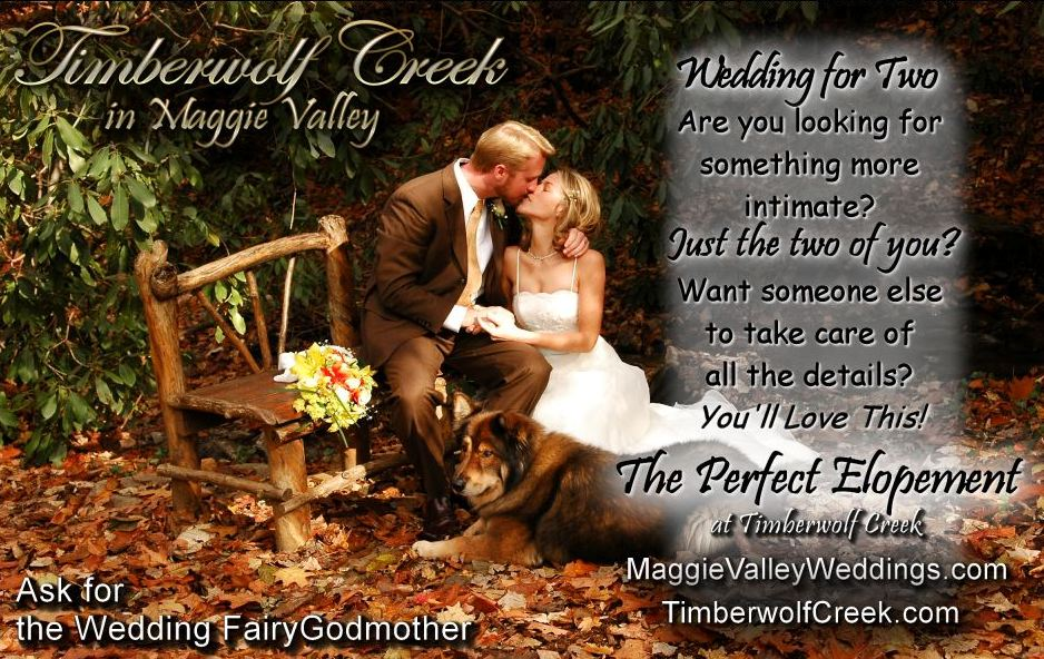 This picture was taken right here, at Timberwolf Creek, in the Brigadoon Cove Outdoor Wedding Chapel.